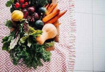 L'alimentation : comment bien se nourrir ?