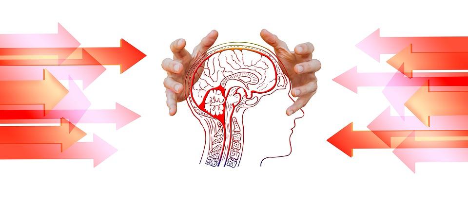 Trois traits de personnalité des thérapeutes : Les psychologues