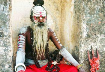 La médecine traditionnelle indienne, un vivier de bienfaits